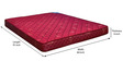 Horizon Queen Size Bonnell Spring Mattress in Maroon Colour by Nilkamal