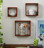 Helium Eclectic Wall Shelves Set of 3 in Brown by Bohemiana