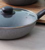 Illa Stone Coated Non Stick Cooking Pot with Lid - 28 CM