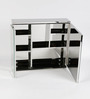 JJ Sanitaryware Lana Stainless Steel Bathroom Mirror Cabinet