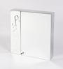 JJ Sanitaryware Logan Stainless Steel Bathroom Mirror Cabinet