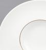 Kahla Magic Grip Line of Gold Diner Porcelain Gourmet Plate