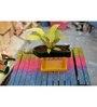 Kavi Stand-Up Planter (Yellow)
