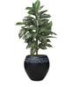 Greymode Kolam Planter Black