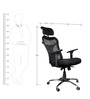 Kruz High Series A Back Office Chair in Black colour by BlueBell Ergonomics