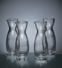 Luigi Bormioli Carafe Perfecta Glass 300 ML Bottle - Set of 4