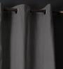 Lushomes Sedona Sage Cotton 90 x 54 Inch Plain Door Curtain with 8 Eyelets & Plain Tiebacks - Set of 2