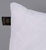 Lushomes White Polyester 20 x 12 Inch Cushion Insert - Set of 2