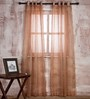 Marigold Peach & Beige Polyester Stripes Sheer Curtain - Set of 2