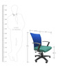 Marina Office Ergonomic Chair in Green Colour by Chromecraft