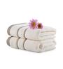 Mark Home Ivory Cotton 16 x 24 Hand Towel - Set of 2