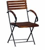 Mexico Folding Chair in Provincial Teak Finish by Woodsworth