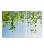 Multiple Frames Printed Green Leaves Art Panels like Painting - 5 Frames