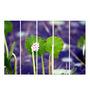 Multiple Frames Printed Green Leaves Panels like Painting - 5 Frames