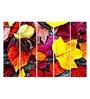 Multiple Frames Printed Red Yellow Leaves Art Panels like Painting - 5 Frames