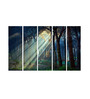 Multiple Frames Printed Sunlight between trees Art Panels like Painting - 5 Frames
