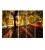 Multiple Frames Printed Sunlight from tree Art Panels like Painting - 5 Frames