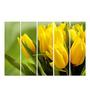 Multiple Frames Printed Yellow Leaves Panels like Painting - 5 Frames