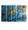 Multiple Frames Printed Yellow Leaves Tree Art Panels like Painting - 5 Frames