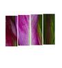 Multiple Frames purple leaves art panels like Painting - 4 Frames