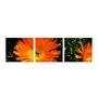 Multiple Frames yellow flower art panels like Painting - 3 Frames