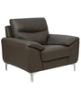 One Seater Half Leather Sofa in Grey Colour by Star India