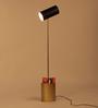Orange Tree Black Iron Midas Floor Lamp