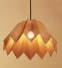 Orange Tree Pleats Hanging Lamp