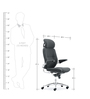 Pashe Executive Chair in Black Colour by Oblique