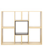 Perplex Display Unit in Brown Colour by Gravity