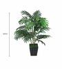 Pollination Green Polyester Areca Artificial Plant Without Pot