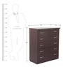 Protea Chest Of Drawer Wallnut  by Looking Good Furniture