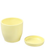 Beige Ceramic Table Top & Saucer By Decardo