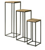 Ruchar Set of Tables in Dual Tone Finish by Bohemiana