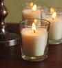 Hosley Glass Candle - Set of Twelve