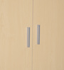 Two Door Wardrobe in Light Ash Finish by Heveapac
