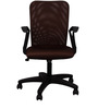 Sino Chair in Brown Colour by The Furniture Store
