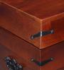 Slaney Trunk in Honey Oak Finish by Amberville