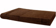 Sofa cum Bed (Queen Bed) in Brown Colour by Springtek Ortho Coir