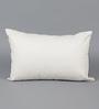 Solaj Black & White Cotton 12 x 18 Inch Embroidered Cushion Cover