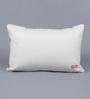 Solaj Golden Cotton 12 x 18 Inch Sequin Cushion Cover