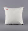 Solaj Multicolour Cotton 16 x 16 Inch Printed & Embroidered Cushion Cover