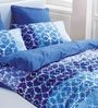 Esprit Home True Multicolour 100% Cotton Abstract Bed Sheet