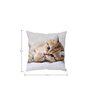 Stybuzz Cute Cat White Silk Cushion Cover