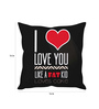 Stybuzz Multicolor Poly Silk 16 x 16 Inch I Love You Cushion Cover