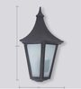 SuperScape Outdoor Lighting Exterior Wall Light Traditional WL1202