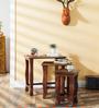 Aravinda - Painted Set Of Tables by Mudramark