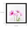 Tallenge Paper & Glass 12 x 12 Inch  Cosmea Flower Framed Digital Art Prints