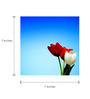 Tallenge Canvas 7 x 7 Inch  Tulips Framed Digital Art Prints