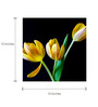 Tallenge Yellow Canvas 15 x 15 Inch  Multicolor Tulips Frame Framed Digital Art Prints